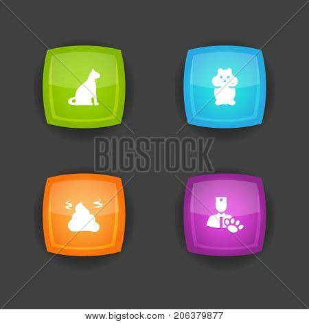Collection Of Veterinarian, Pile, Sitting And Other Elements.  Set Of 4 Pets Icons Set.