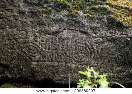 Ancient Petroglyph is located in the Sikhote-Alin , Khabarovskiy kray, Russia