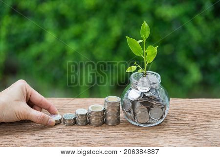 Hand holding stack of coin and jar with growth sprout plant as financial investment concept.