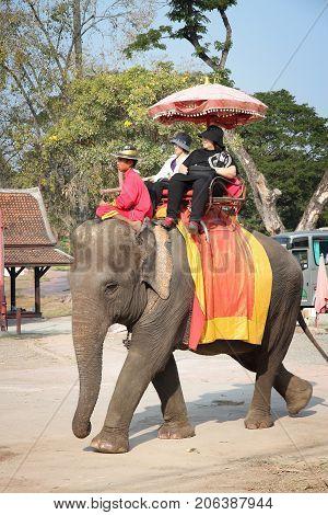 Elephant Ride, Thailand