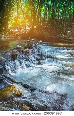 Waterfall River Flow From Forest Landscape. Serenity Nature Background.