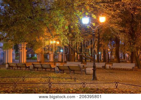 Night autumn view of illuminated alley with benches in Nikolskiy garden St. Petersburg Russia