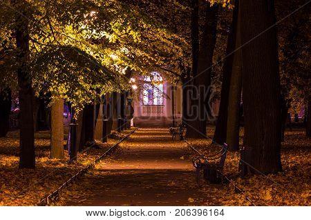 Night autumn view of illuminated alley with benches in Mikhailovskiy Garden Saint Petersburg Russia