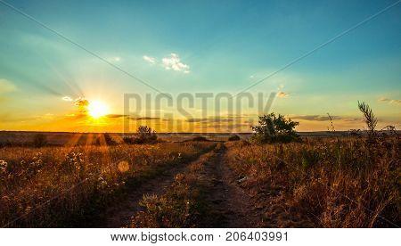 The autumn sun slowly sets in over the horizon, precipitating the rays illuminating the yellow field