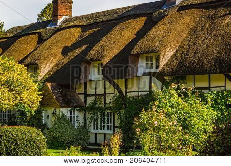 traditional house with thatched roof and garden