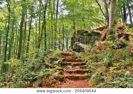 Stone Steps On Forest Path Leading To Bucina Lookout At Beginning Autumn In West Bohemia