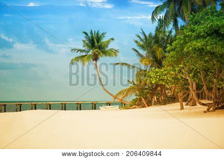Beach with pier and palm trees on the Atlantic coast