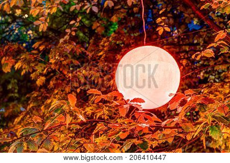 Hanging Colorful, Vibrant, Vivid Red Ball Lamp, Lantern Decoration With Reflection On Tree Leaves, B