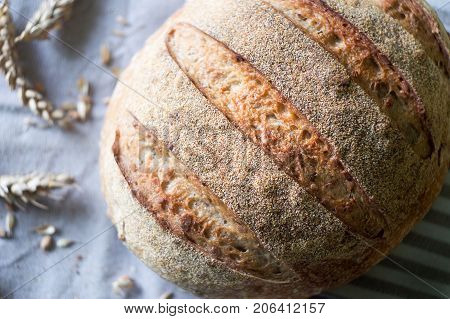 Close-up of whole wheat sourdough bread and ears of wheat on a kitchen towel