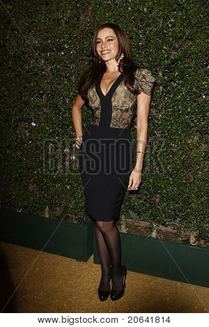 WEST HOLLYWOOD, CA - JAN 5:  Sofia Vergara at the COVERGIRL 50th Anniversary Celebration at BOA Steakhouse held on January 5, 2011 in West Hollywood, California.