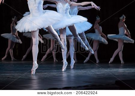 tenderness, agility, choreography concept. dance of little swans performed by four attractive and graceful ballerinas with thin aesthetic legs in light pink pointe shoes