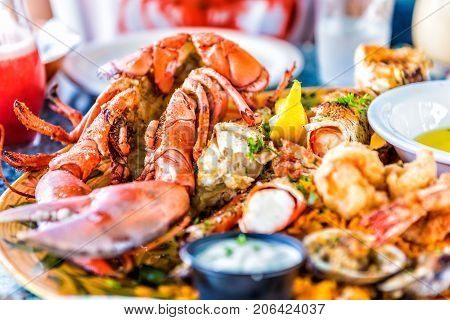 Macro closeup of red lobsters shrimp crab oyster and seafood platter on plate in restaurant with tartar sauce
