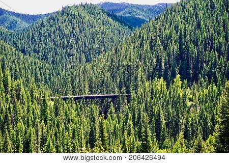 Trestle bridge in Saint Joe National Forest Idaho