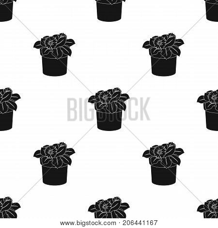 Flower in the pot icon in black design isolated on white background. Bio and ecology symbol stock vector illustration.