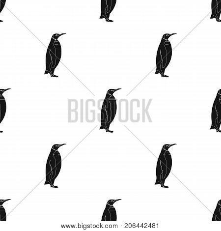 Penguin, flightless sea bird. The Imperial Penguin single icon in black style vector symbol stock illustration .