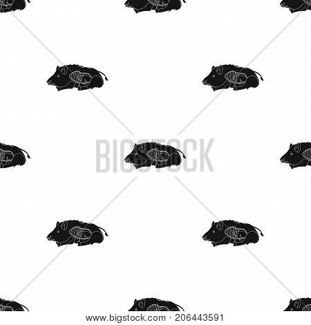 Boar single icon in black style.Boar, vector symbol stock illustration .