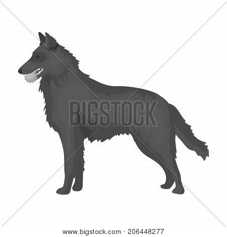 A pet, a dog with a ball in his teeth, a German shepherd. Pet, dog care single icon in monochromt style vector symbol stock illustration .
