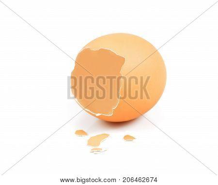 broken egg shell closeup on white background The shell one brown egg's on white background
