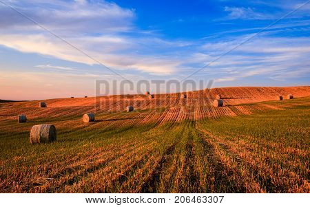 Hay bales on the field at sunset