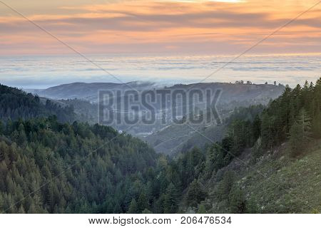 Santa Cruz Mountains and Fog Above The Pacific Ocean. Purisima Creek Redwoods, Redwood City, San Mateo County, California, USA.
