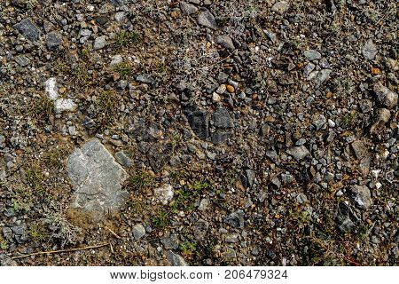 Soil. Ground texture. Soil background. Abstract nature pattern. Stony ground