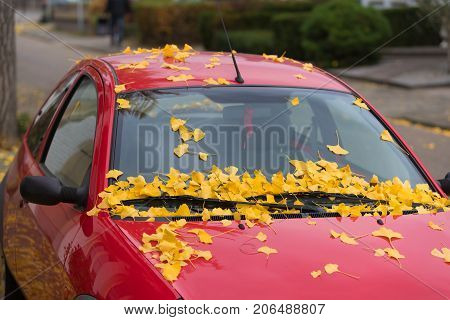 red car covered with fallen autumn leaves