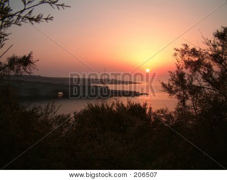 Sunrise On A Rocky Beach With Trees