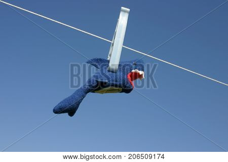 Toy shark hanging on the clothesline against blue sky outdoors