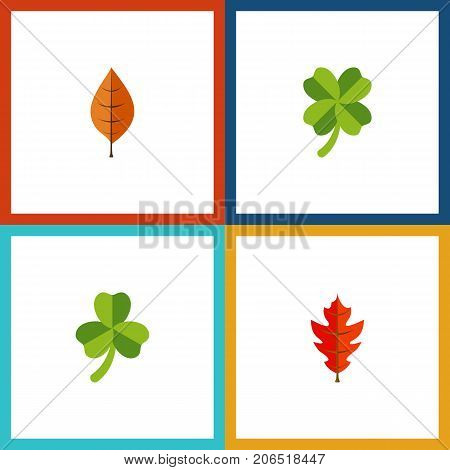 Flat Icon Maple Set Of Frond, Leafage, Leaf And Other Vector Objects