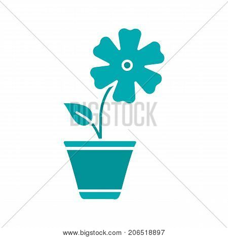 Hibiscus in flowerpot glyph color icon. Silhouette symbol on white background. Negative space. Vector illustration