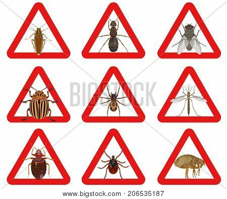 Vector collection of warning icons of red color with a picture of colored insect pests on white background. Insects that harm people.