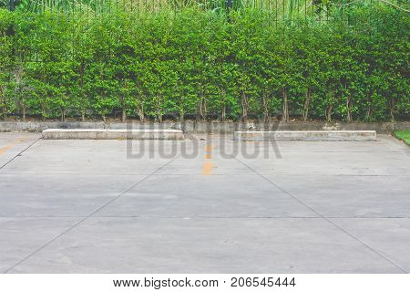 Empty space in car parking lot at outside buildings with green bush background.