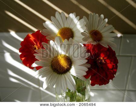 Bunch Of Flowers In Sunny Window