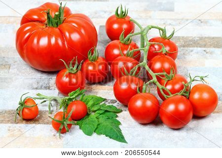 Beefsteak cherry and common tomatoes on stone background. Decorated with fresh tomato leaves in front.