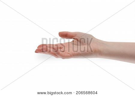 Give take hand. Woman's hand is open and gives or takes something. Human people hand sign isolated on white background. Open palm trust and friendship. Gentle hand for cooperation or assistance help