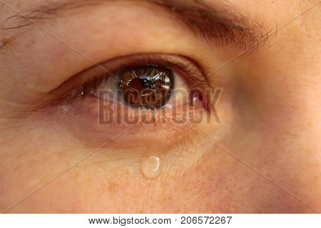 Eye with tears close up. Tear drop on woman's eye. Sad girl cry