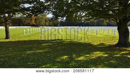 Military Cemetery Crosses Under Trees