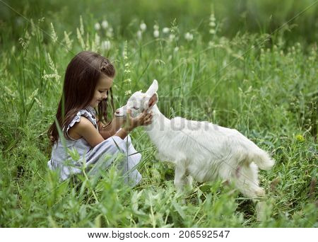 Little girl plays and hugs goatling in country, summer nature outdoor. Cute kid with baby animal, countryside outdoor portrait, forest, trod, glade background. Friendship of child and yeanling