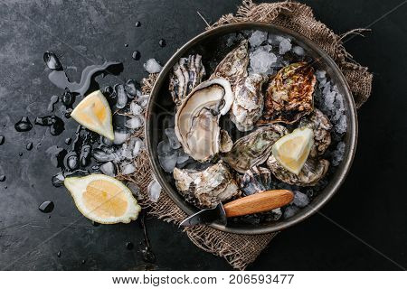 Raw oyster with ice and lemon on a dark background. Top view.