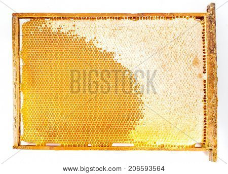 Frame with honeycombs and honey on a white background