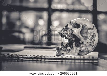 Skull or skeleton head in open mouth for eating simulating action o n the notebook After life and Deadman concept Healthy and healthcare concept