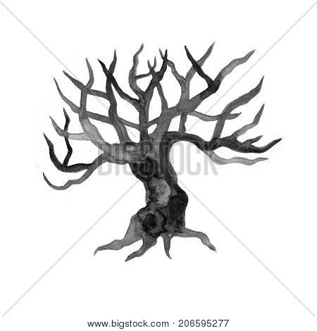 Watercolor dry, bare tree, branch, bough, no leaves closeup isolated on white background. Hand painting on paper
