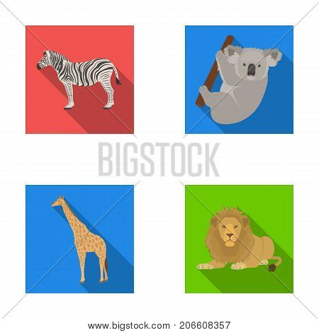 African zebra, animal koala, giraffe, wild predator, lion. Wild animals set collection icons in flat style vector symbol stock illustration .