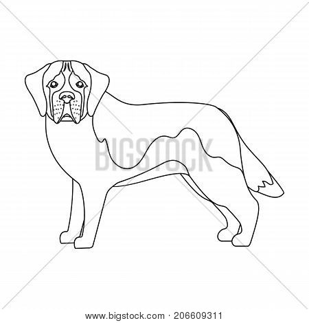 Beagle, single icon in outline style.Beagle, vector symbol stock illustration .