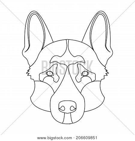 german images  illustrations  vectors