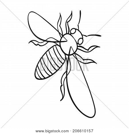 A bee, a hymenopteran insect. Stinging insect bee single icon in outline style vector symbol stock isometric illustration .