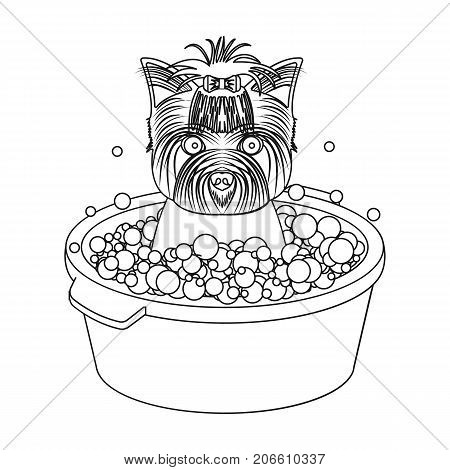 Bathing pet puppy in a bowl. dog, Pet, dog care single icon in outline style vector symbol stock illustration .