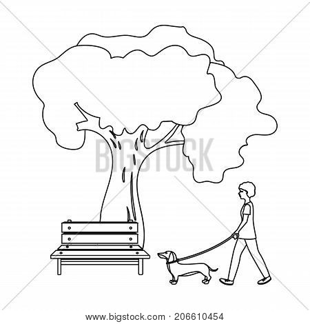 Tree and bench, woman walks a pet in the park. Pet, Dog care single icon in outline style vector symbol stock illustration .