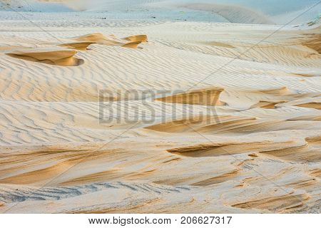 magnificent sandy waves on a sunny day