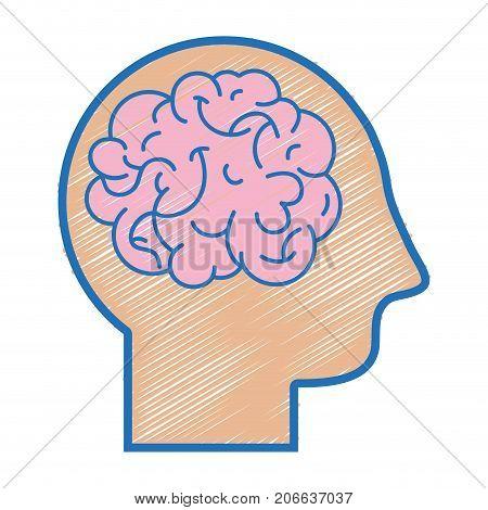 silhouette man with anatomy brain design vector illustration